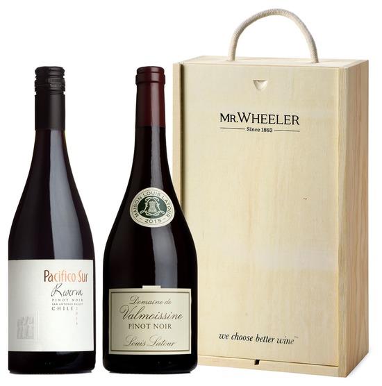 Great Grapes: Pinot Noir Duo Gift Box
