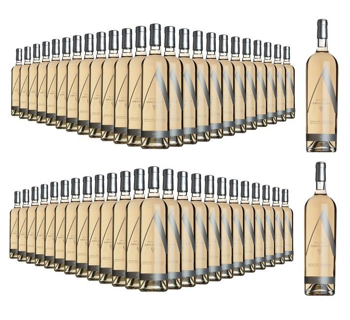 2018 Rosé de Provence, Selection Angelvin (48 bottles + 2 FREE Magnums)