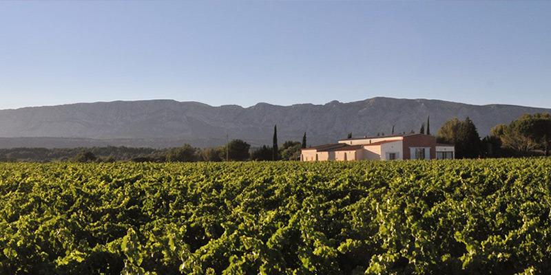 Mas de Cadenet Rosé Côtes-de-Provence 2019 (Magnum)