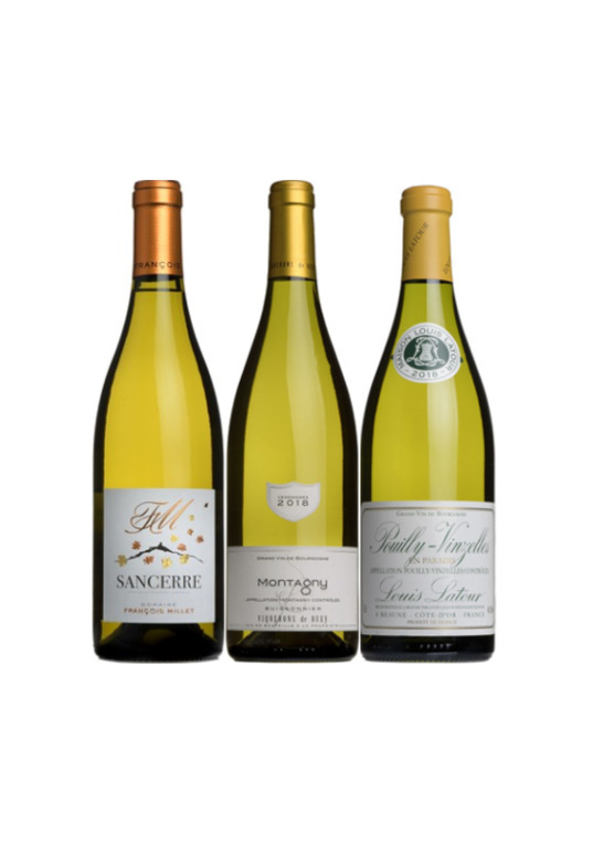 James's White Wine Discovery Case