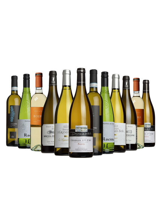 The Wine List All Whites Case